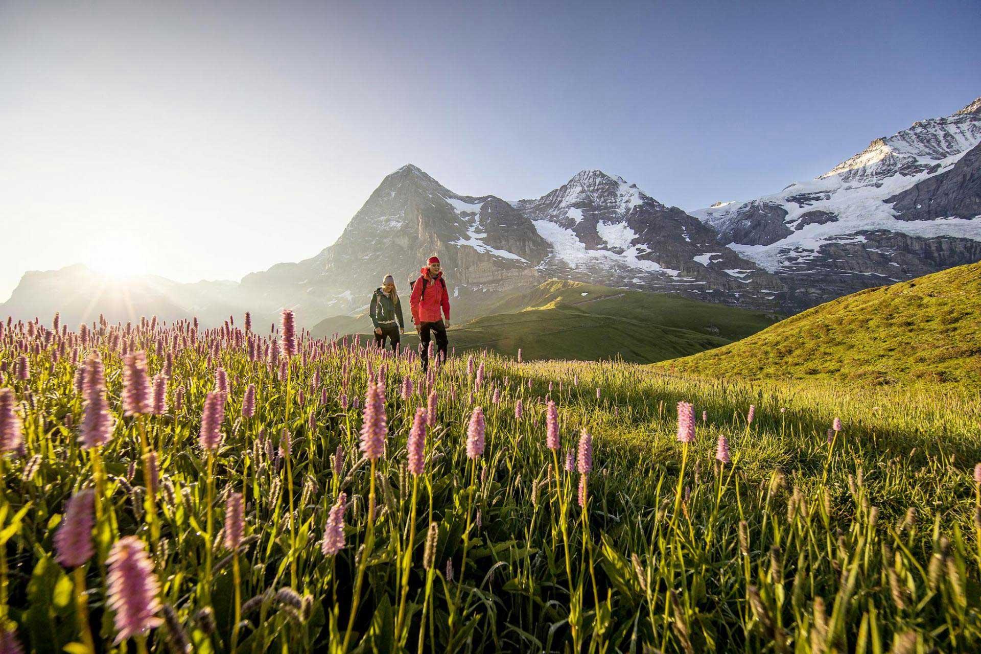 Erlebnisspass in der Jungfrau Region
