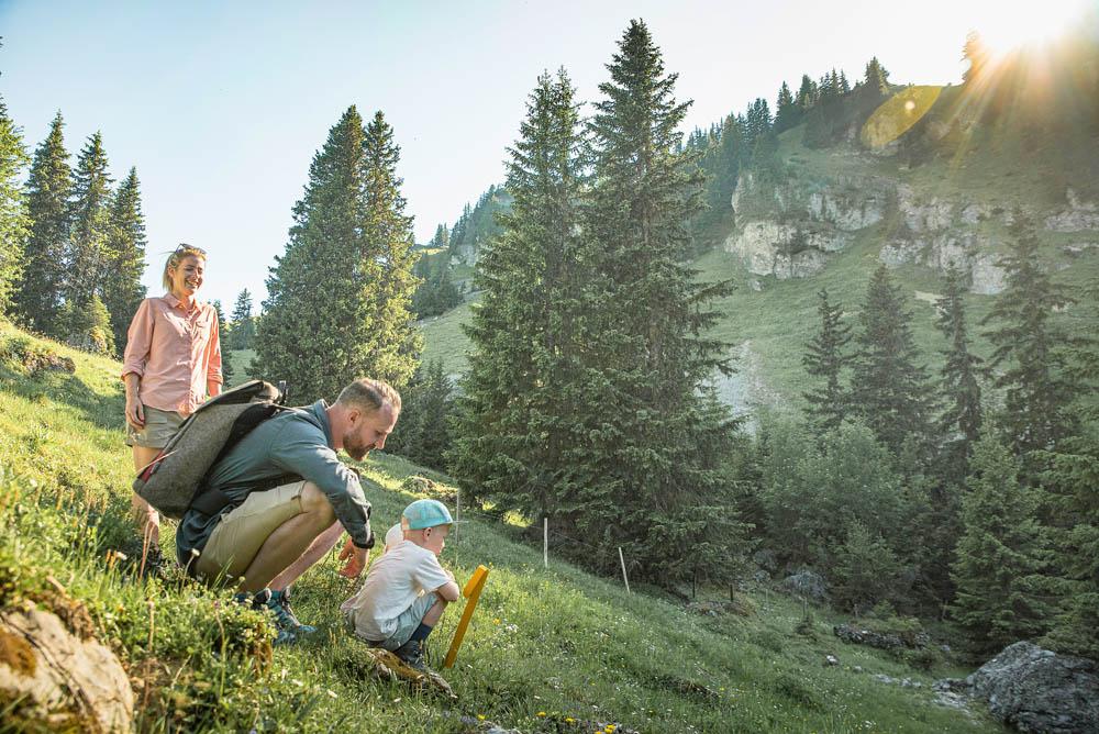Blumenweg Nomadness Gst Hiking 106 © Destination Gstaad